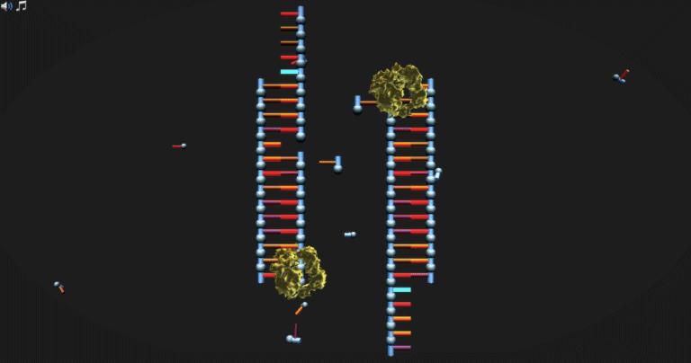 molecular mechanism behind the USER cloning