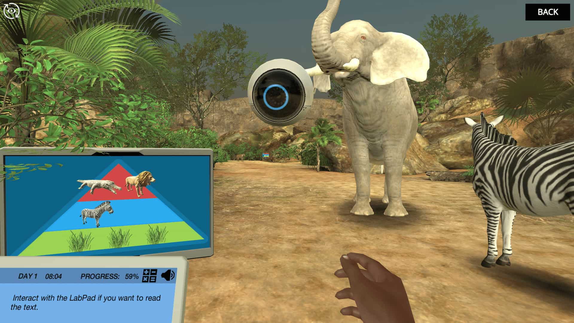 image from Trophic levels virtual lab