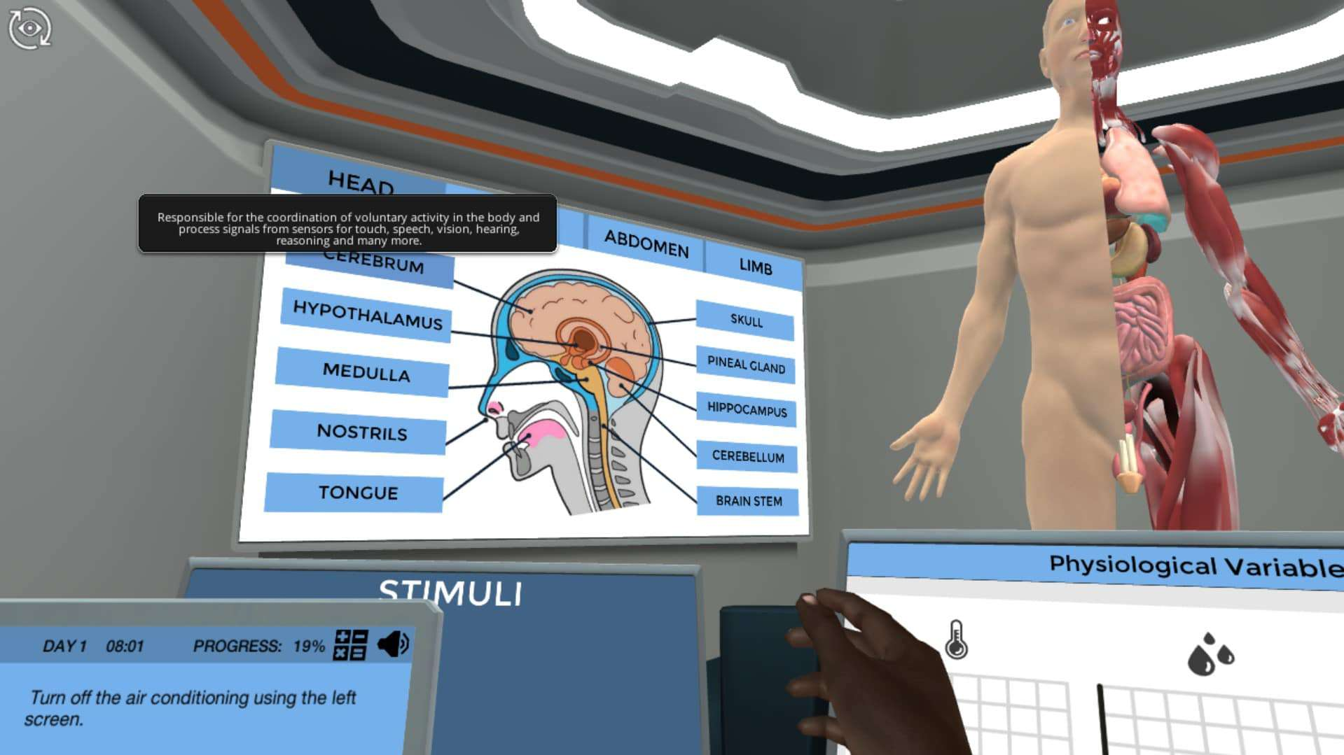 image from Homeostatic Control virtual lab