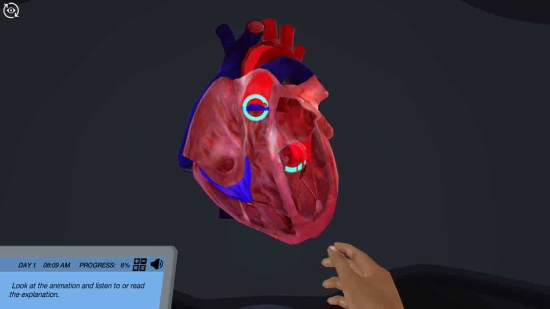 image from echocardiography virtual lab