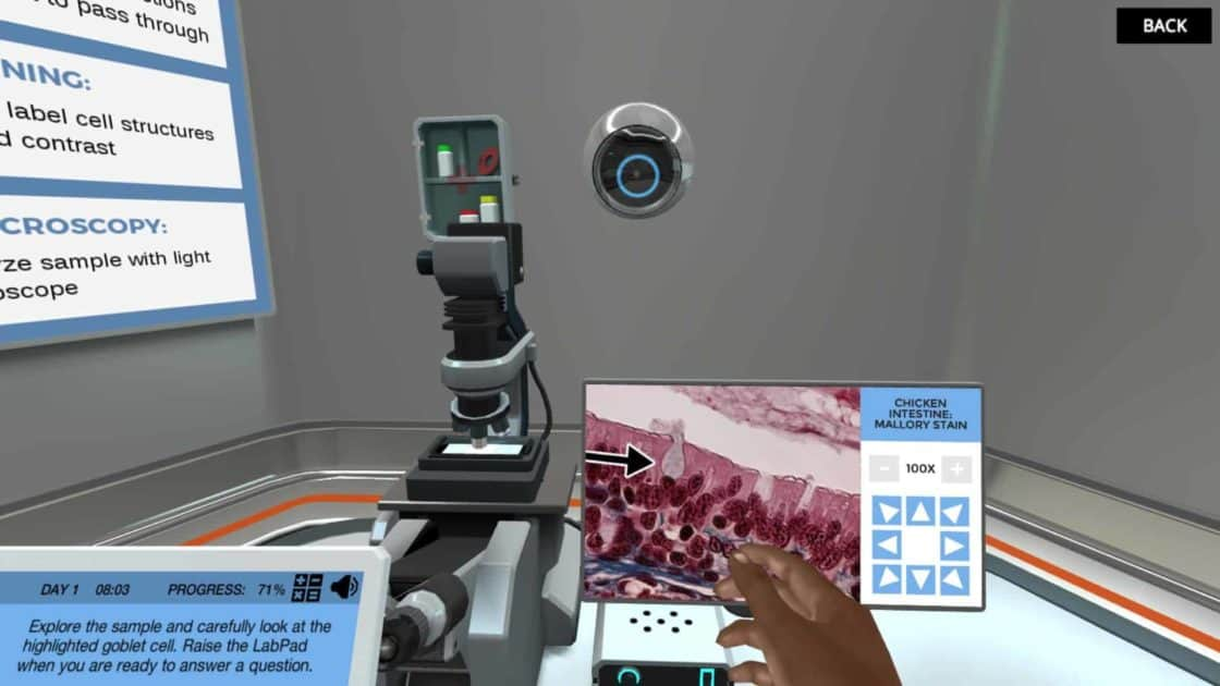 image from Light Microscopy virtual lab