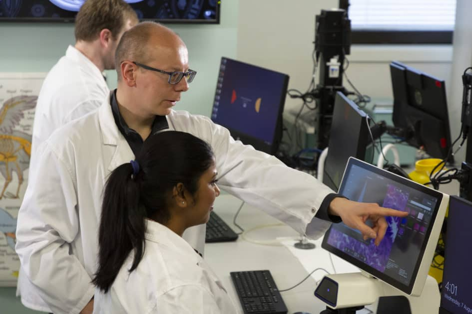 Professor Donald Wlodkowic with students in his lab